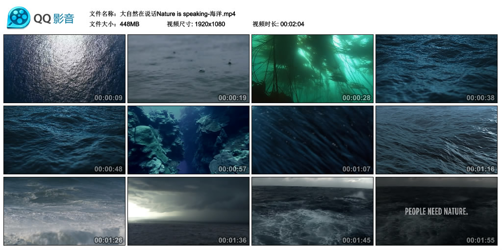 Nature is speaking丨大自然在说话-海洋(高清无水印) 视频素材-第1张