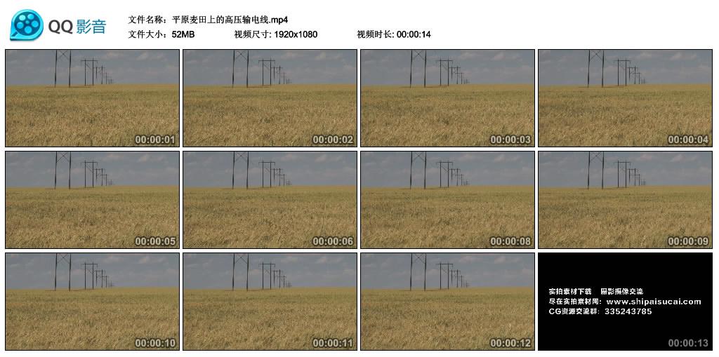 高清实拍视频丨平原麦田上的高压输电线 视频素材-第1张