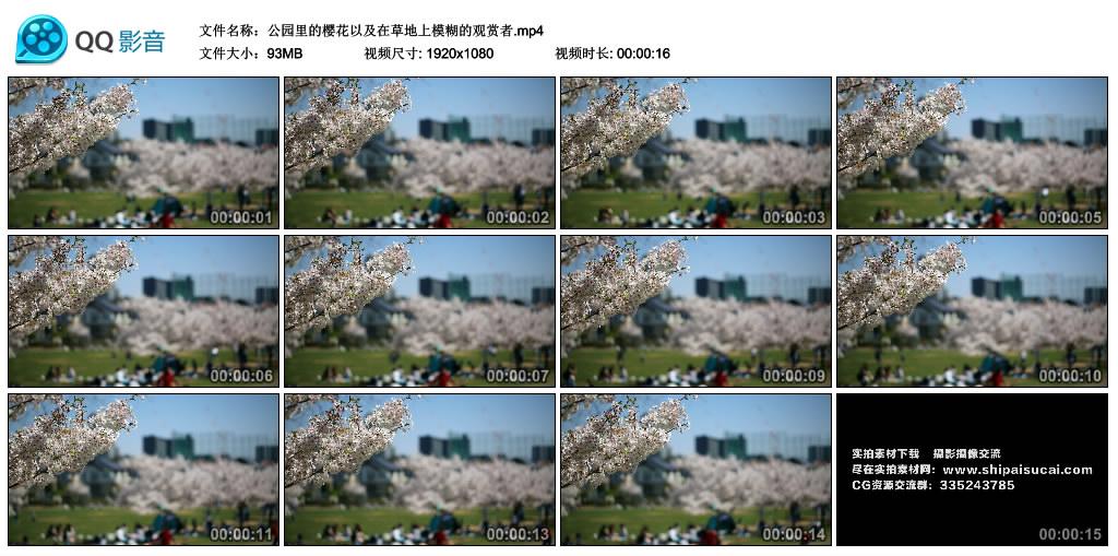 高清实拍视频丨公园里的樱花以及在草地上模糊的观赏者 视频素材-第1张