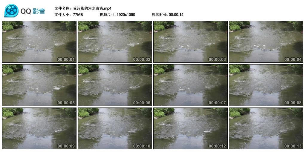 高清实拍视频丨受污染的河水流淌 视频素材-第1张
