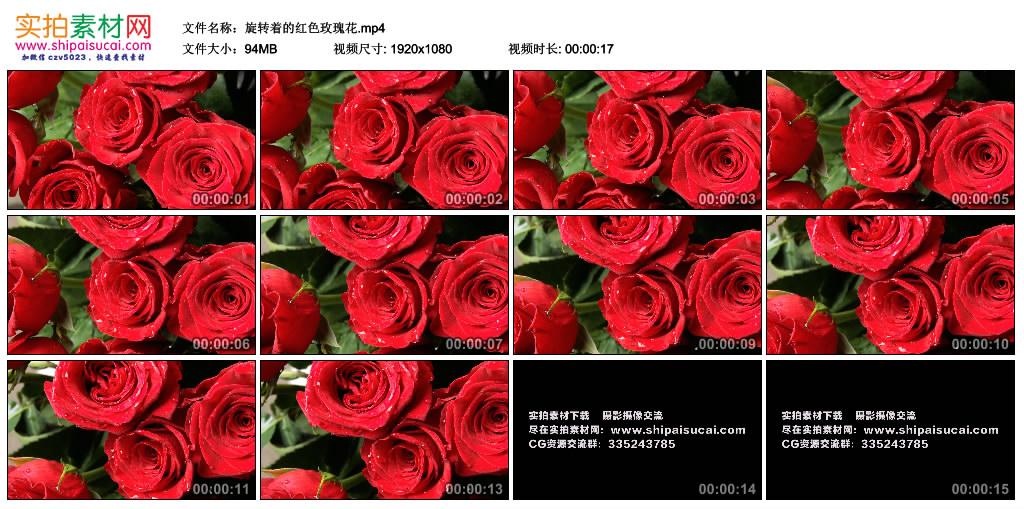 高清实拍视频丨旋转着的红色玫瑰花 视频素材-第1张