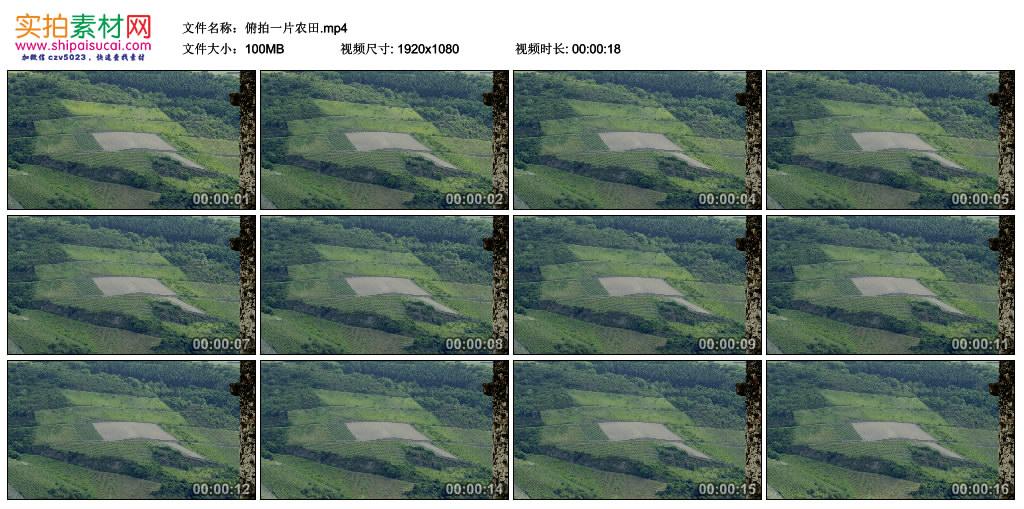 高清实拍视频丨俯拍一片农田 视频素材-第1张