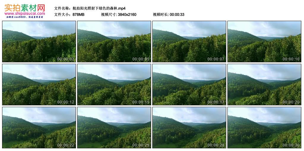 4K实拍视频素材丨航拍阳光照射下绿色的森林 4K视频-第1张
