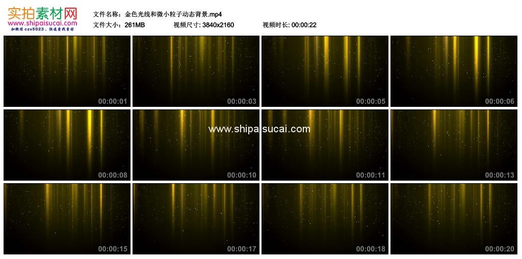 4K动态视频素材丨金色光线和微小粒子动态背景 4K视频-第1张