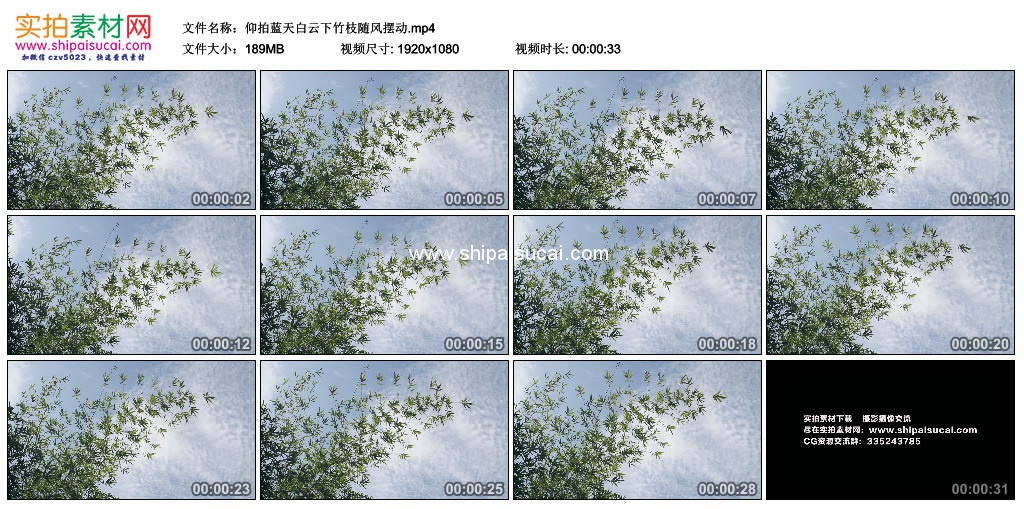 高清实拍视频素材丨仰拍蓝天白云下竹枝随风摆动 视频素材-第1张