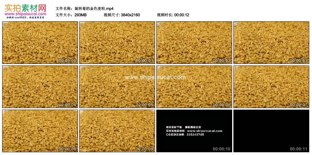 4K实拍视频素材丨旋转着的金色麦粒 4K视频-第1张