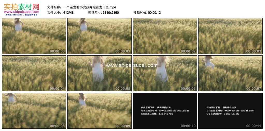 4K实拍视频素材丨一个金发的小女孩奔跑在麦田里 4K视频-第1张
