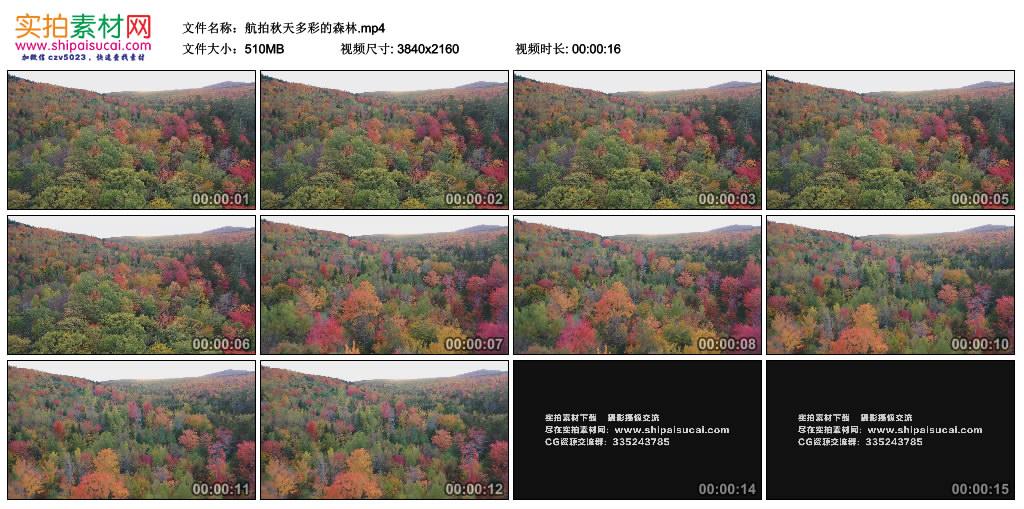 航拍秋天多彩的森林
