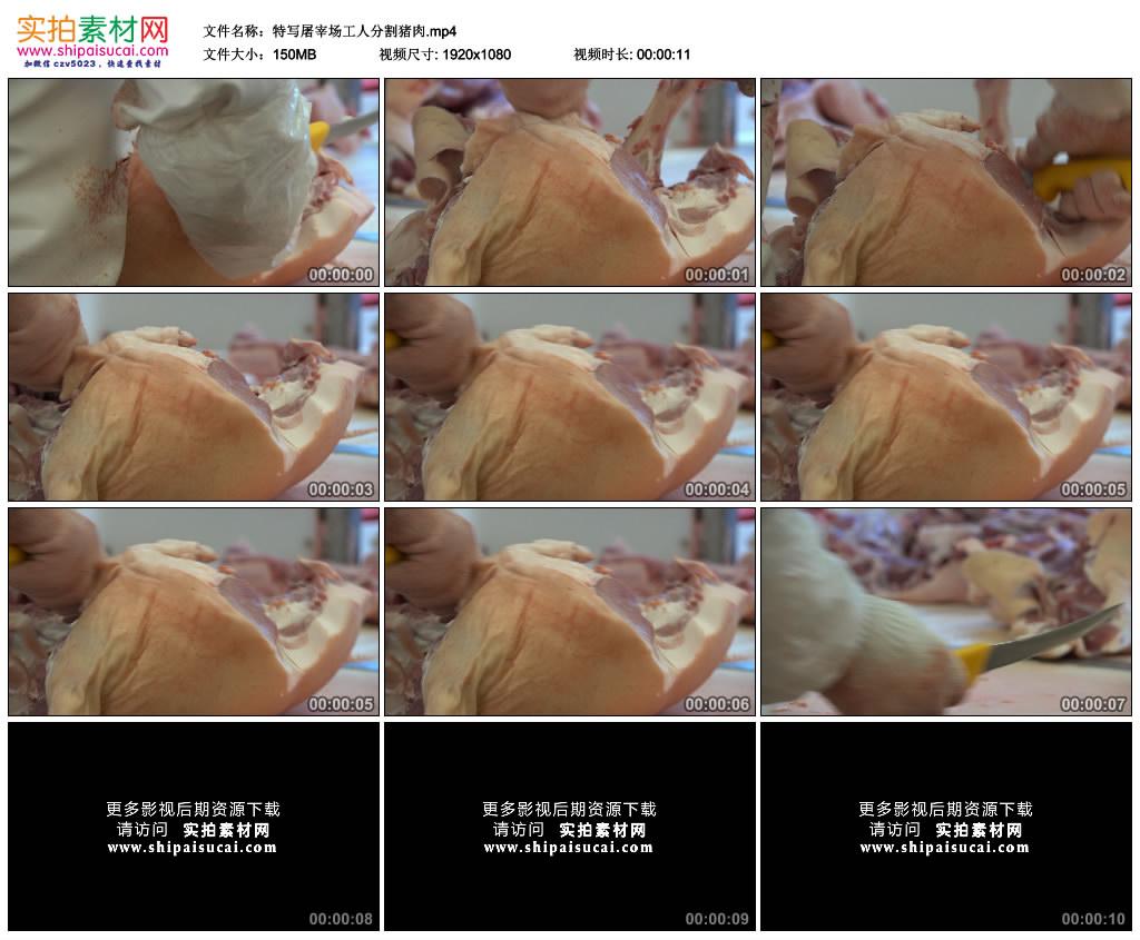 高清实拍视频素材丨特写屠宰场工人分割猪肉 视频素材-第1张