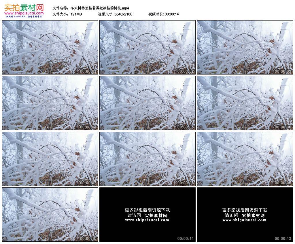 4K实拍视频素材丨冬天树林里挂着雾凇冰挂的树枝 4K视频-第1张