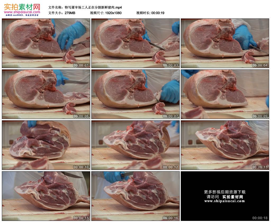 高清实拍视频素材丨特写屠宰场工人正在分割新鲜猪肉 视频素材-第1张