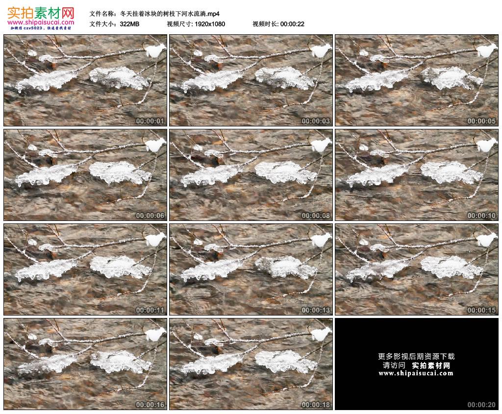 高清实拍视频素材丨冬天挂着冰块的树枝下河水流淌 视频素材-第1张
