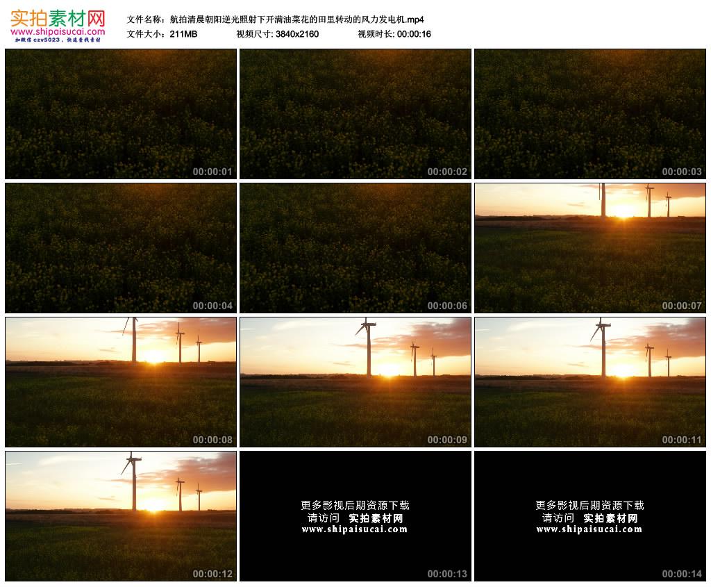 4K实拍视频素材丨航拍清晨朝阳逆光照射下开满油菜花的田里转动的风力发电机 4K视频-第1张