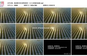 高清实拍视频素材丨航拍晴天阳光照射着的一大片太阳能电池板