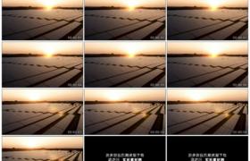 4K实拍视频素材丨航拍清晨日出时阳光照射下的一大片太阳能发电场