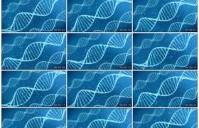 高清动态视频素材丨蓝色背景上白色的DNA螺旋结构转动生物基因动态背景