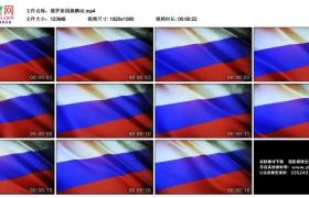 高清实拍视频丨俄罗斯国旗飘动