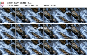 4K实拍视频素材丨秋天溪水流过铺着黄叶的潺潺小溪