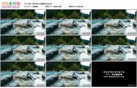 高清实拍视频素材丨森林里河水潺潺流淌
