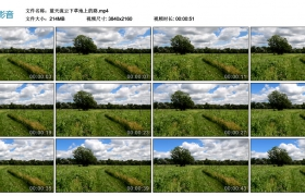 4k视频丨蓝天流云下草地上的路