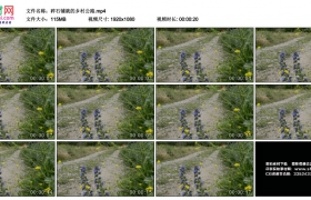 高清实拍视频丨碎石铺就的乡村公路