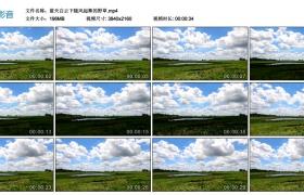 4K视频丨蓝天白云下随风起舞的野草