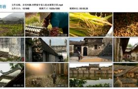高清实拍视频丨乡村风情-田野留守老人收水稻等日常