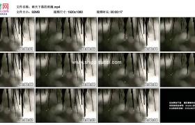 高清实拍视频素材丨雨天下落的雨滴