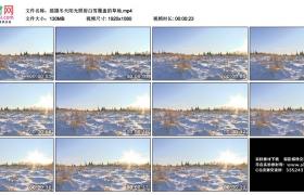 高清实拍视频丨摇摄冬天阳光照射白雪覆盖的草地