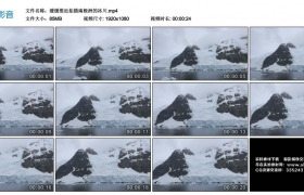 高清实拍视频丨缓缓推近拍摄南极洲的冰川