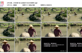 高清实拍视频素材丨乡村农耕 老人赶着老水牛在水田里耕作