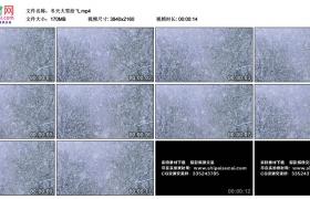 4K视频素材丨冬天大雪纷飞