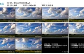 高清实拍视频素材丨蓝天流云下绿色的田野