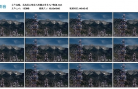 高清实拍视频丨高高的山峰前几株薰衣草在风中轻摆