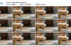 高清实拍视频丨水槽上的塑料水龙头滴水-节约用水