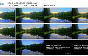 高清实拍视频丨金色的天空映在树林旁的湖面上