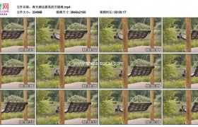 4K实拍视频素材丨春天湖边摇晃的空摇椅