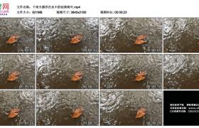 4K实拍视频素材丨下雨天漂浮在水中的枯黄树叶