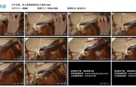 高清实拍视频丨焦点变换演奏者拉大提琴