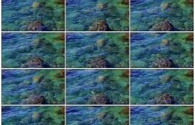 4K实拍视频素材丨海水波浪起伏拍打礁石