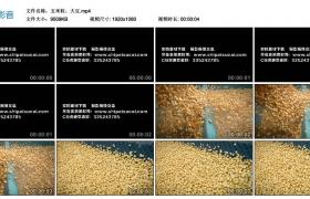 [高清实拍素材]玉米粒、大豆
