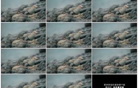 4K实拍视频素材丨特写岸边的鹅卵石和流动的水流