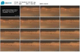 [高清实拍素材]夕阳下的自然风光3(湖中天鹅)