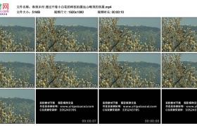 高清实拍视频丨春到乡村 透过开着小白花的树枝拍摄远山峰顶的房屋