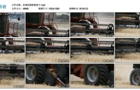【高清实拍素材】农场收割机割麦子