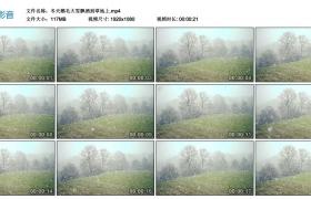 高清实拍视频丨冬天鹅毛大雪飘洒到草地上