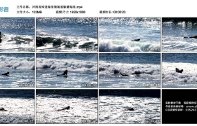 高清实拍视频丨冲浪者掉进海里匍匐着躲避海浪