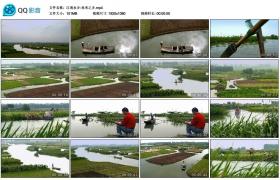【高清实拍素材】江南水乡-鱼米之乡