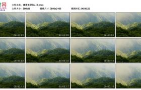 4K实拍视频素材丨薄雾笼罩的山林