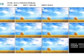 【高清实拍素材】蓝天白云下收获后的农田美如画